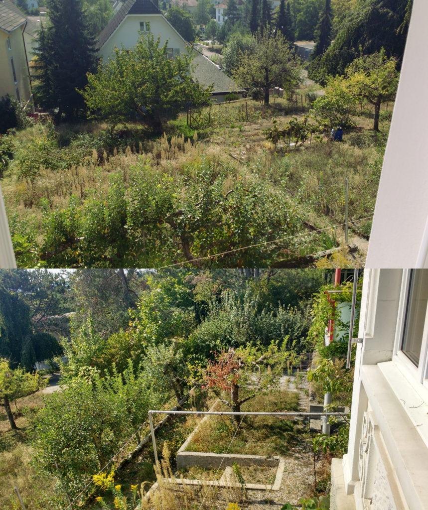 10 Garten